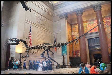 Interior del Museo de Historia Natural de New York
