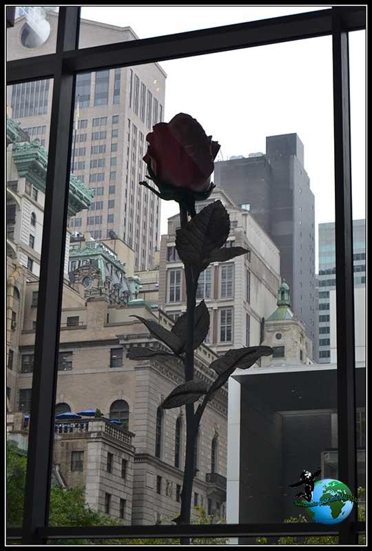 Rosa gigante en la entrada del Moma, Nueva York
