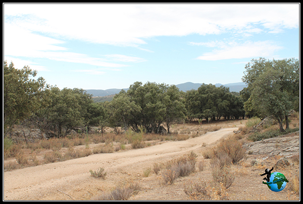 Ruta de senderismo fácil por Colmenar del Arroyo.