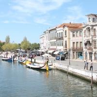Dia 4 Oporto: Costa Nova, Aveiro y vuelta a casa