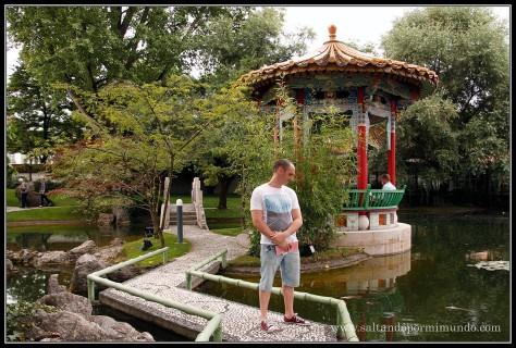 Observando a las carpas en el Jardín Chino de Zurich