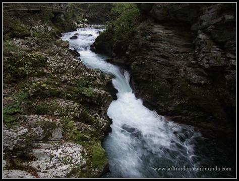 1788 - Los rápidos del río Radovna en la Garganta de Vintgar lun26-9