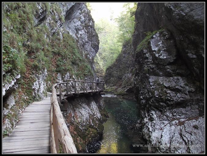 1799 - El río Radovna en la Garganta de Vintgar lun26-9
