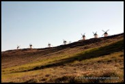 Molinos de viento en fila en Consuegra.