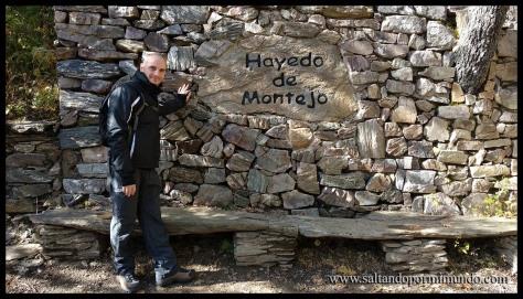 Entrada al Hayedo de Montejo
