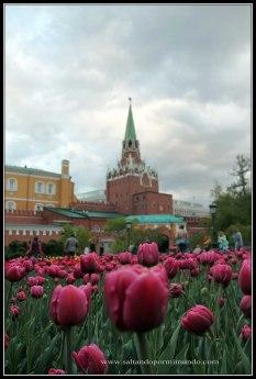 Jardines del Kremlin